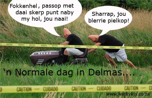 Delmas_eierkoppe