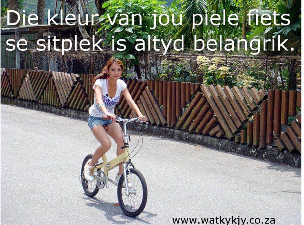piele fiets