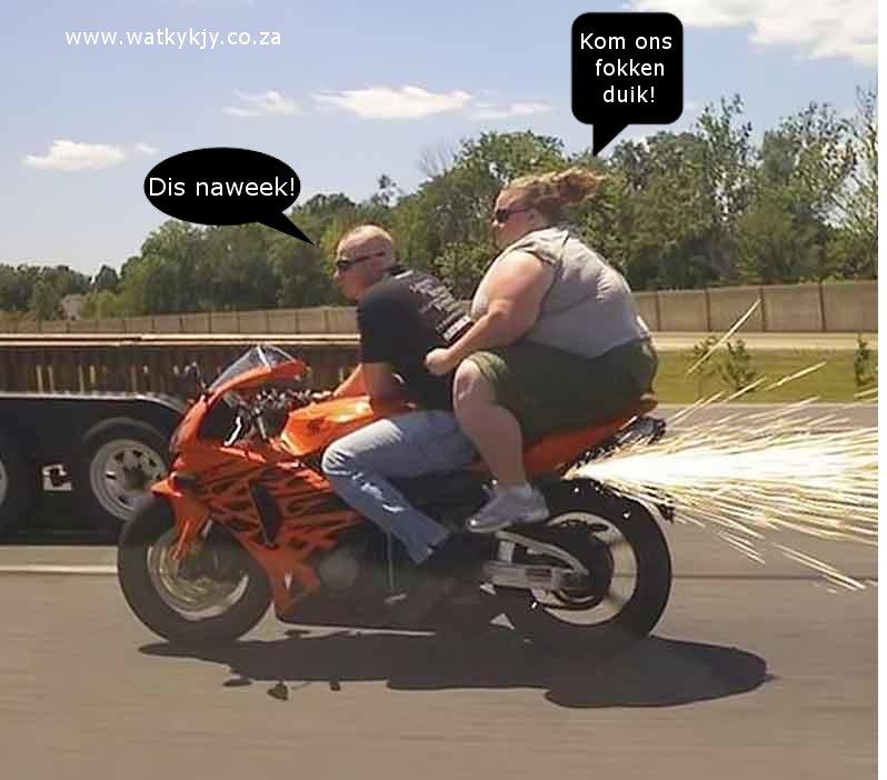 biker vet bitch sparks duik
