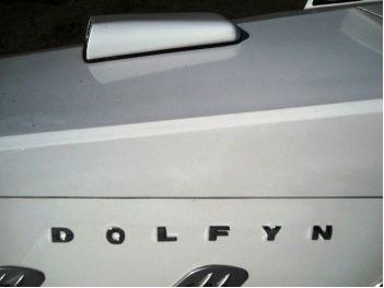 dolfyn5