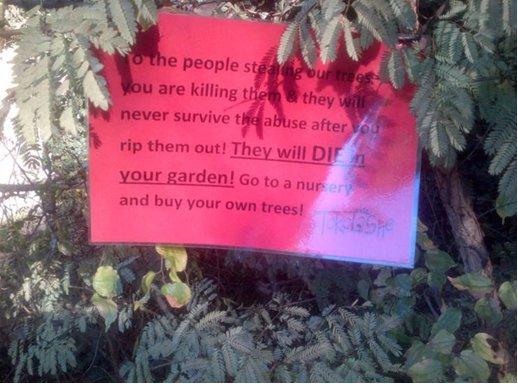 zef tuin