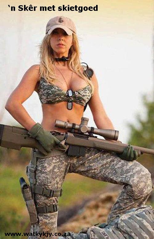 hot goose met guns