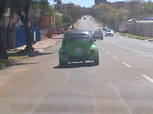 faktap beetle