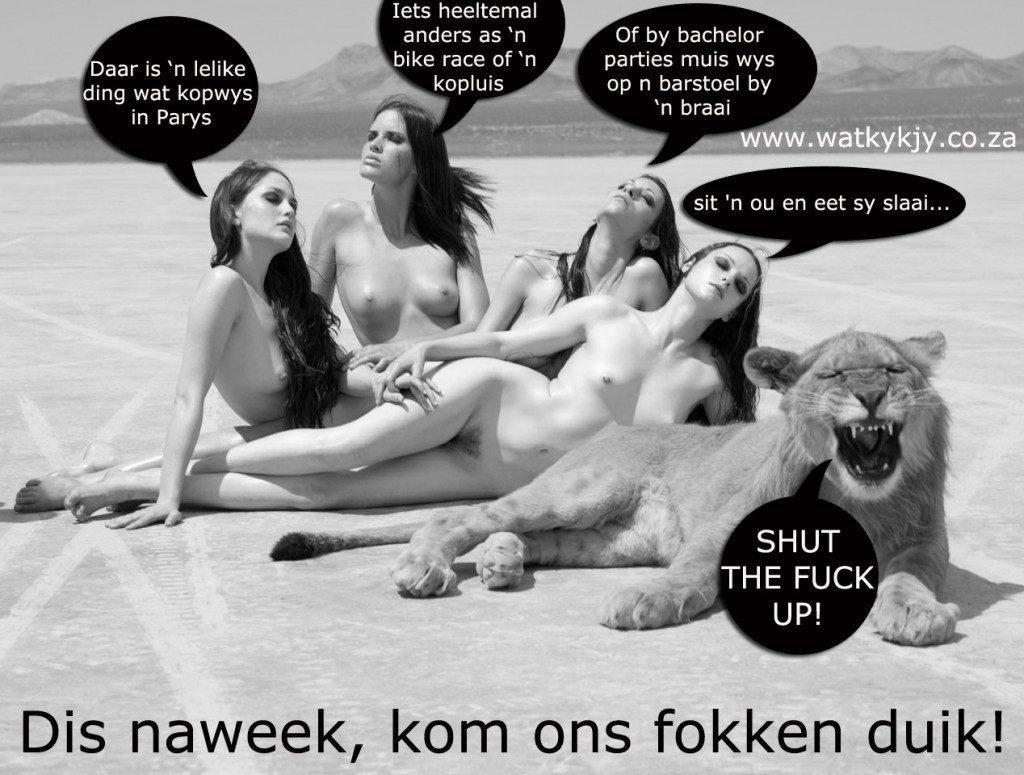 dis-naweek,-kom-ons-leeuloop