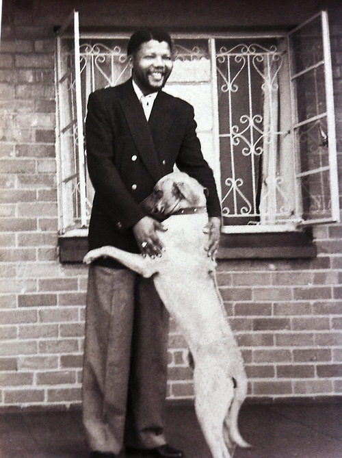 mandela with dog