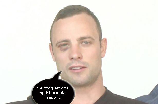 sa-wag-steeds-op-nkandla-report