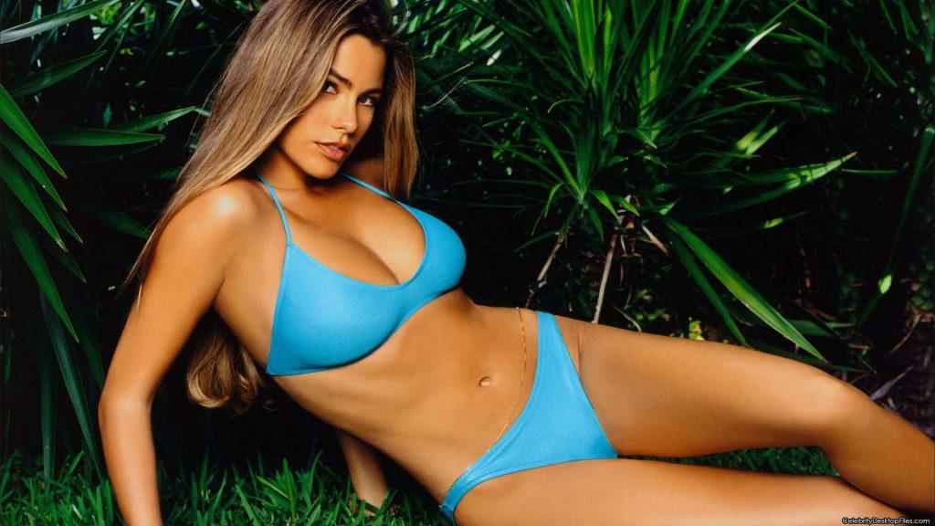 sofia-vergara-bikini-90687