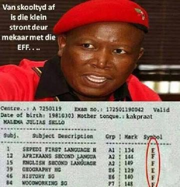 julius-malema-EFF