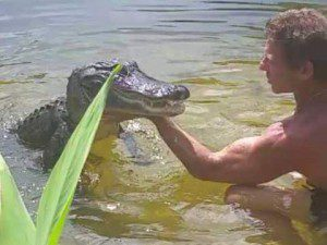 hal crocodile whisperer