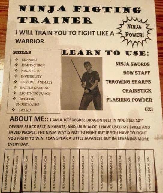 serias ninja skills