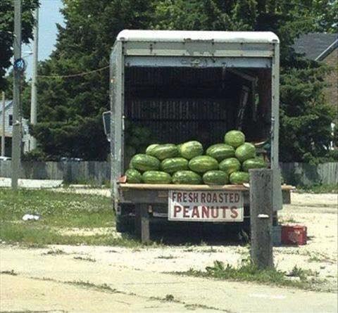 poesgroot peanuts