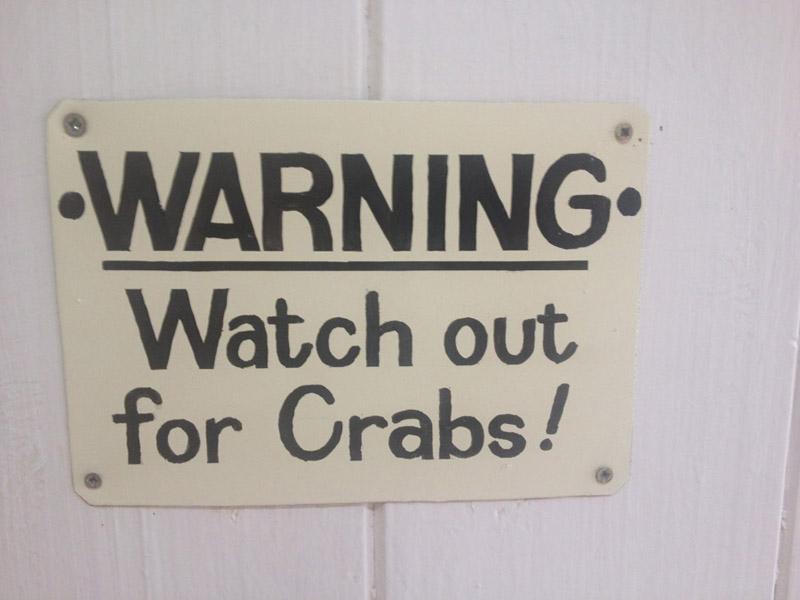 toilet crabs pelgrims 2