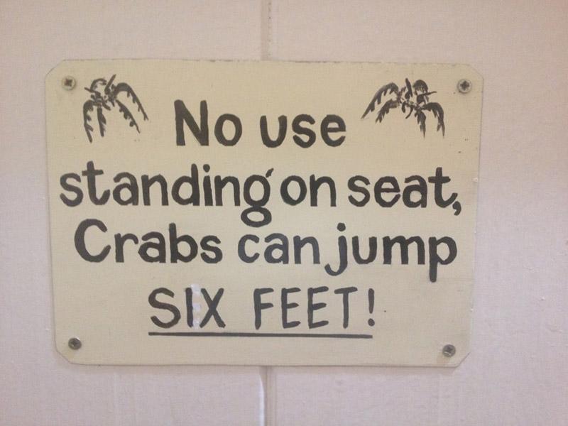 toilet crabs pelgrims