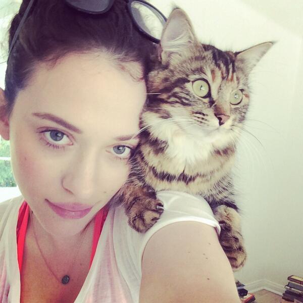 kat op kat dennings se skouer