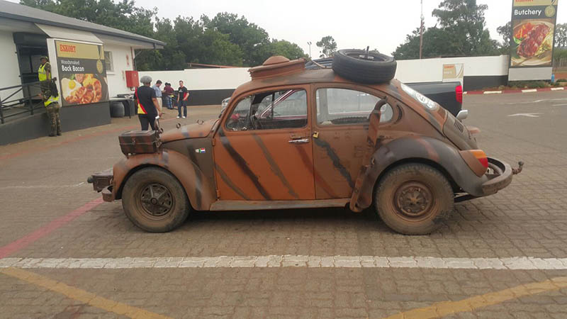 bruin beetlea pretoria 4