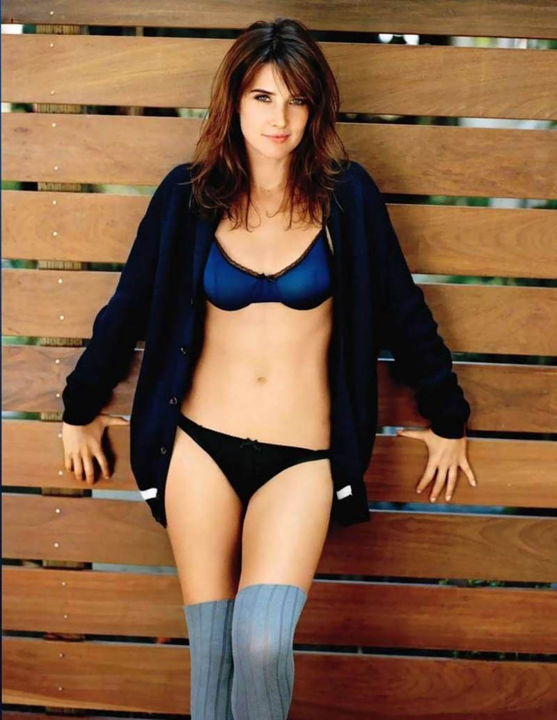 cobie-smulders-hot-wallpapers-2ffaed31a62fcea835466bfa0de2a65e-large-264692