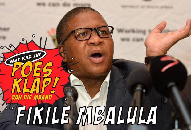 Fikile-Mbalula poesklap van die maand