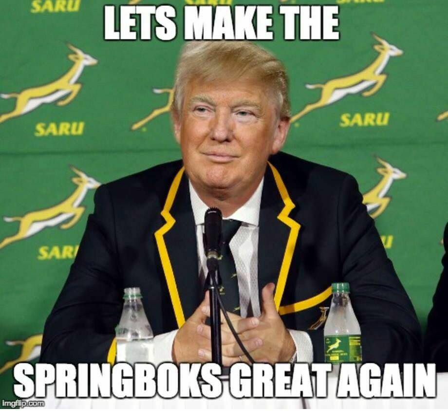 springboks-great-again