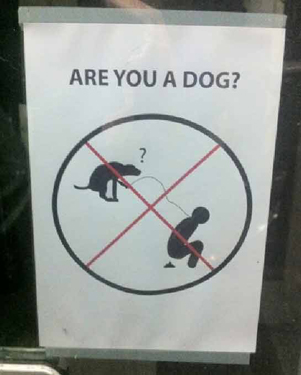 are-you-a-dog